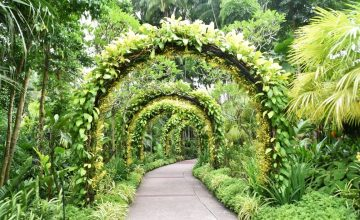 19-nassim-near-botanic-gardens-singapore